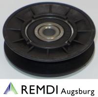 Spannrolle Umlenkrolle 10 mm / 73 mm RT601011