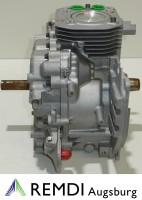 Original Kohler Teilemotor 1252221 CV14